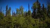 C27 Alaskan Wildwood Ranch(R) - Photo 5