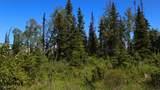 C27 Alaskan Wildwood Ranch(R) - Photo 8