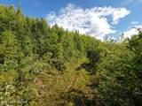 000 Big Timber Circle - Photo 13