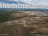 L7-8 Peterson Forest Park - Photo 1