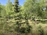 38145 Woods Drive - Photo 2