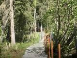 38145 Woods Drive - Photo 20