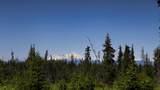 C34 Alaskan Wildwood Ranch(R) - Photo 2