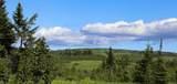 C34 Alaskan Wildwood Ranch(R) - Photo 4