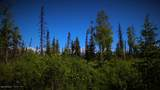 C28C32 Alaskan Wildwood Ranch(R) - Photo 11