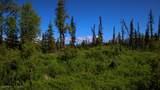 C28C32 Alaskan Wildwood Ranch(R) - Photo 12