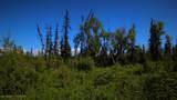 C28C32 Alaskan Wildwood Ranch(R) - Photo 14