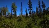C28C32 Alaskan Wildwood Ranch(R) - Photo 16