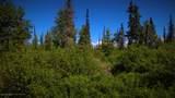 C28C32 Alaskan Wildwood Ranch(R) - Photo 3
