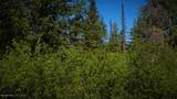 C28C32 Alaskan Wildwood Ranch(R) - Photo 5