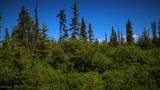 C28C32 Alaskan Wildwood Ranch(R) - Photo 7