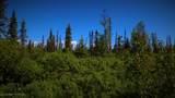 C28C32 Alaskan Wildwood Ranch(R) - Photo 8