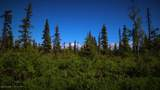 C28C32 Alaskan Wildwood Ranch(R) - Photo 9