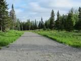 15573 Wild Salmon Way - Photo 1