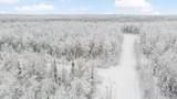 L12 B1 Denali View Estates - Photo 11