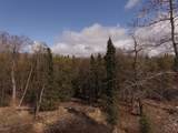 L16 Peninsula Park Estates - Photo 3