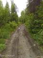 27472 Aurora Lake Road - Photo 17