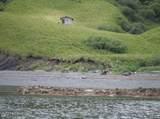 NHN Eagle Harbor - Photo 4