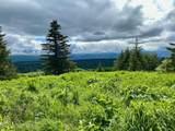 28732 Caribou View Lane - Photo 36