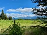 28732 Caribou View Lane - Photo 4