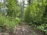 8870 Buffalo Mine Moose Creek Road - Photo 3