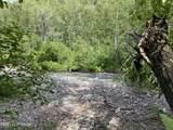 8870 Buffalo Mine Moose Creek Road - Photo 4