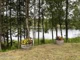 48438 Lake Meadow Lane - Photo 44