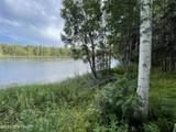 48438 Lake Meadow Lane - Photo 6