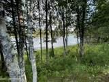 48438 Lake Meadow Lane - Photo 7