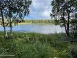 48438 Lake Meadow Lane - Photo 8