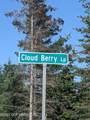L48 Cloud Berry Loop - Photo 1