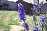 6 Acre Portion Of 1327.6 Alaska Hwy - Photo 31