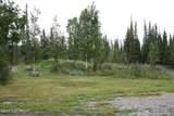 6 Acre Portion Of 1327.6 Alaska Hwy - Photo 54