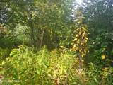 9037 Brophy Circle - Photo 18