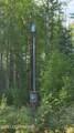 10700 Forest Park Court - Photo 7