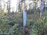 25105 Arctic Fox Road - Photo 15