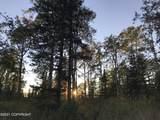 25105 Arctic Fox Road - Photo 5
