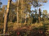25105 Arctic Fox Road - Photo 6