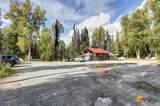 37974 Talkeetna Spur Road - Photo 3