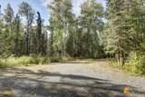 37974 Talkeetna Spur Road - Photo 41