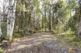 37974 Talkeetna Spur Road - Photo 42