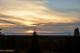 14985 Jesses Trail - Photo 32