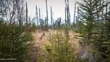 C22 Alaskan Wildwood Ranch(R) - Photo 19