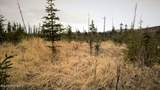 C23 Alaskan Wildwood Ranch(R) - Photo 26