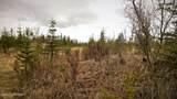 C23 Alaskan Wildwood Ranch(R) - Photo 28