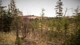 C23 Alaskan Wildwood Ranch(R) - Photo 30