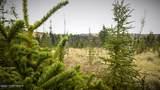 C23 Alaskan Wildwood Ranch(R) - Photo 31