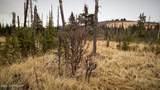 C23 Alaskan Wildwood Ranch(R) - Photo 32