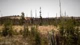 C23 Alaskan Wildwood Ranch(R) - Photo 34