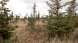 C23 Alaskan Wildwood Ranch(R) - Photo 35